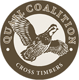Cross Timbers Quail