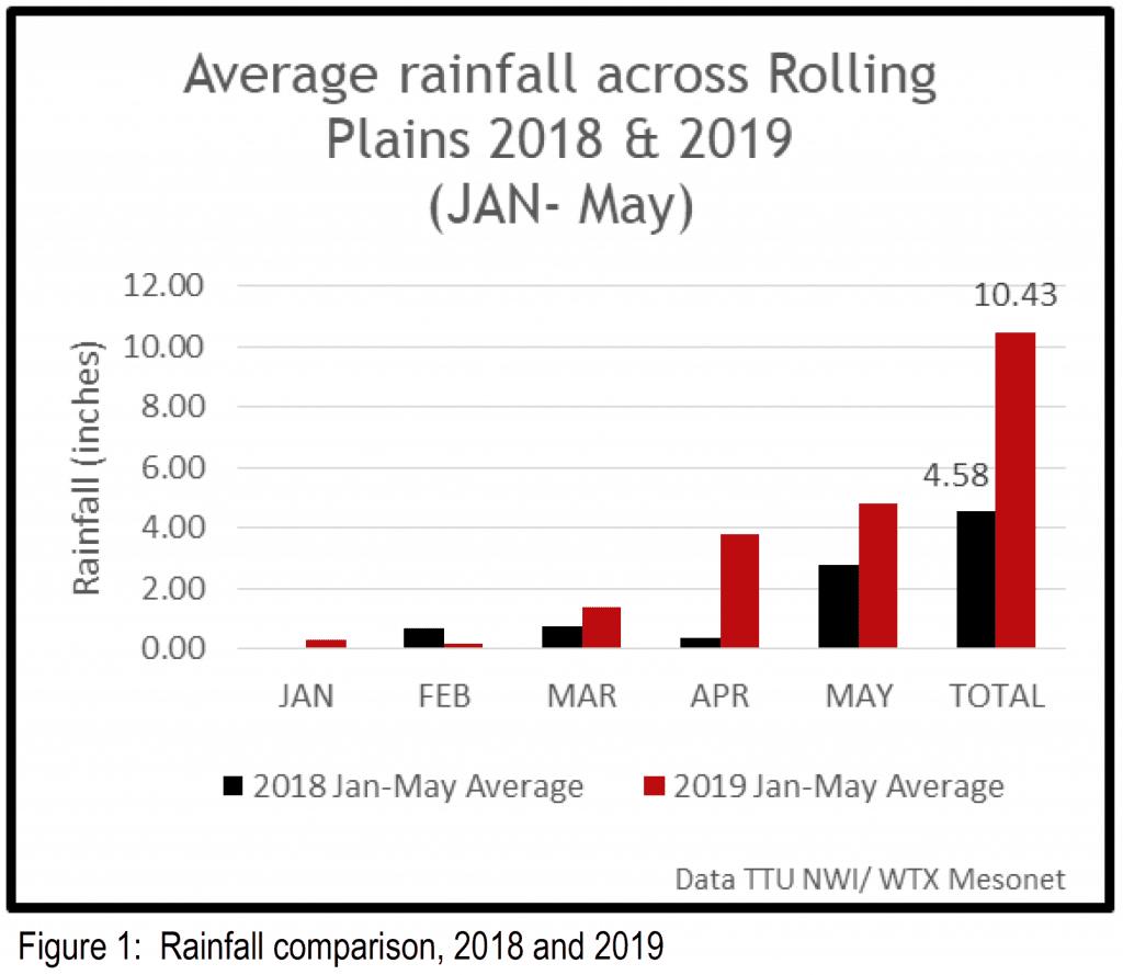 Figure 1 Rainfall Comparison, 2018-2019